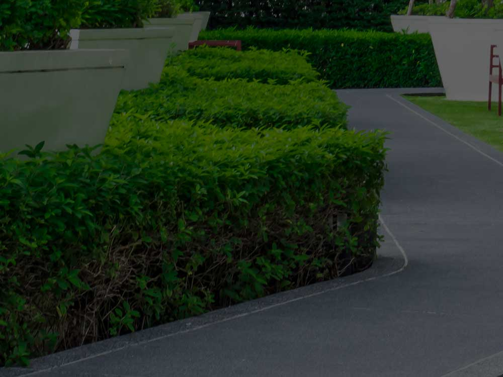 Toronto Commercial Landscaping